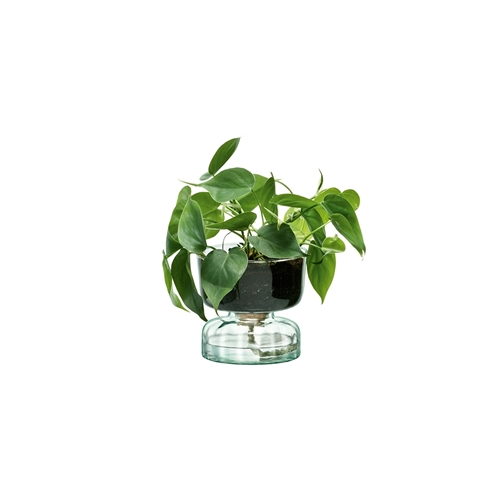 LSA Canopy Self Watering Planter 13cm